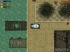 WangCars 3 1.jpg