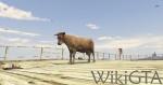 GTAV Cow.jpg