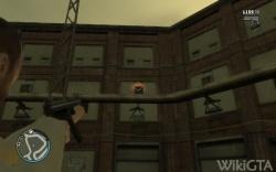 Flying Rat 24.jpg