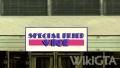 SpecialFriedViceVCS.jpg