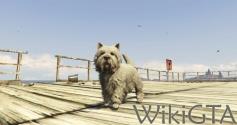 GTAV Terrier.jpg