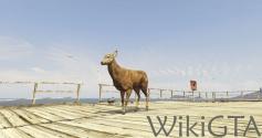 GTAV Deer.jpg