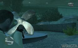 Flying Rat 190.jpg