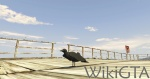 GTAV Crow.jpg