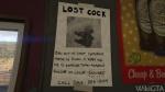 Lost Cock