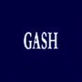 Gash logo.png