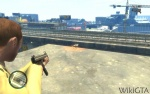 Flying Rat 3 2.jpg