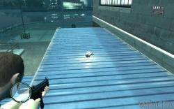 Flying Rat 81.jpg